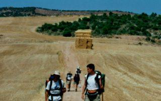 Cammino di Santiago a piedi